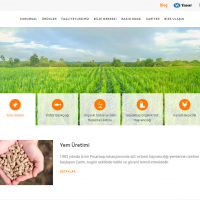 New Website Of Çamlı Is On The Air!