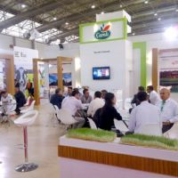 Great Interest To Çamlı At Agroexpo