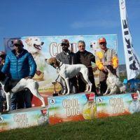 Avkif Cool Dog Sponsorluğunda Yarışlara Devam Ediyor