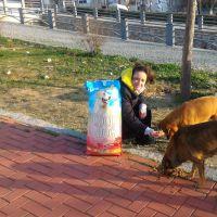 Çamlı'dan Sokak Hayvanlarına Destek