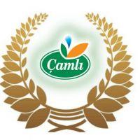 Çamlı, İzmir Ticaret Odası Tarafından Ödüle Layık Görüldü