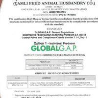 Çamlı Global GAP Sertifikası Aldı