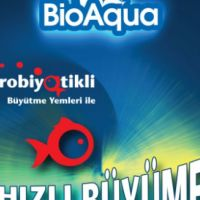 The First Fish Feed With Probiotic In Turkey