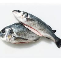 Are There Any Differences Between Sea Fish And Farm Fish In Terms Of The Omega-3 Amount?