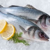 Do We Know The Benefits Of Sea Bass?