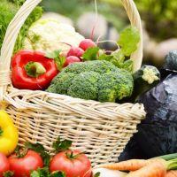 Organik Tarımın Faydaları Nelerdir?