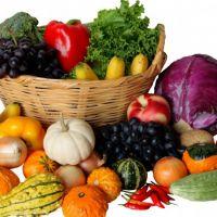 Organik Tarımın Genel Özellikleri ve Prensipleri Nelerdir?