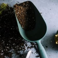 What Are The Effects Of Organic Material To Soil?