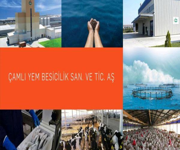 Çamlı, Türkiye'nin En Büyük 500'ü İçinde!