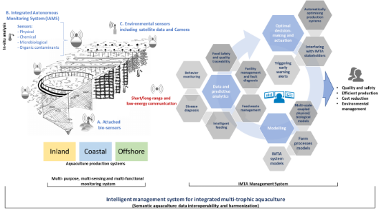 Impaqt Projesi (Intelligent Management System For Entegrated Multitrophic Aquaculture Project) Ve Çamlı Yem ve Besicilik A.Ş'nin Rolü