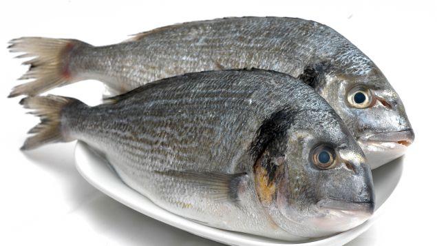 Karada Balık, Alın Size Tavada Balık!